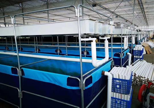 养殖水池夹网布热合机样品